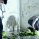 We Destroy Art/Performance of Fabryka Destrukcja / Improvisation of Destruction Factory