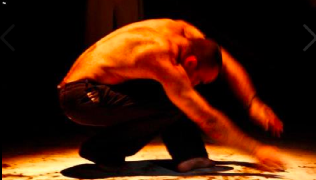 Opportunities:  Auditions For Roberto Olivan & Enclave Arts del Moviment (SPAIN)