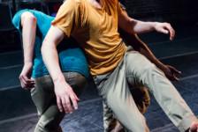 Almanac 2016: John Scott Dance (Dublin, Ireland)