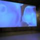 Opportunities: Call for Dance Films – POOL 19 (DOCK 11, Berlin) Deadline – July 4th