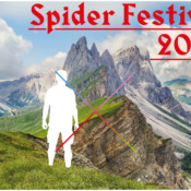 Opportunities: Be A Part Of The 2020 Spider Festival  (Ljubljana, Slovenia) Deadline – 27. May 2020