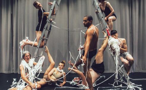 Opportunities: danceWEB scholarship programme 2021 (Vienna, Austria) Deadline – 5th December 2020
